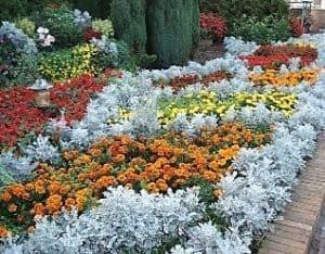 Цветна алея